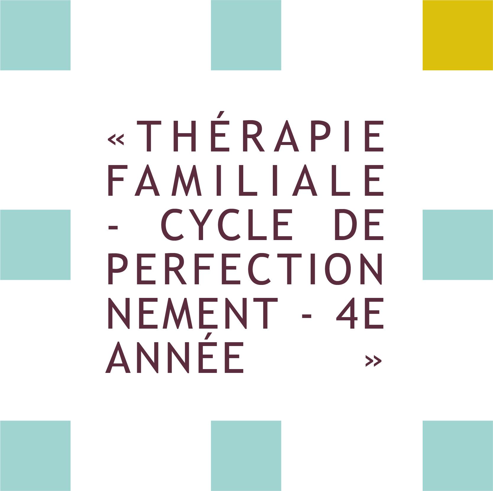 formation thérapie familiale -cycle de perfectionnement 4ième année