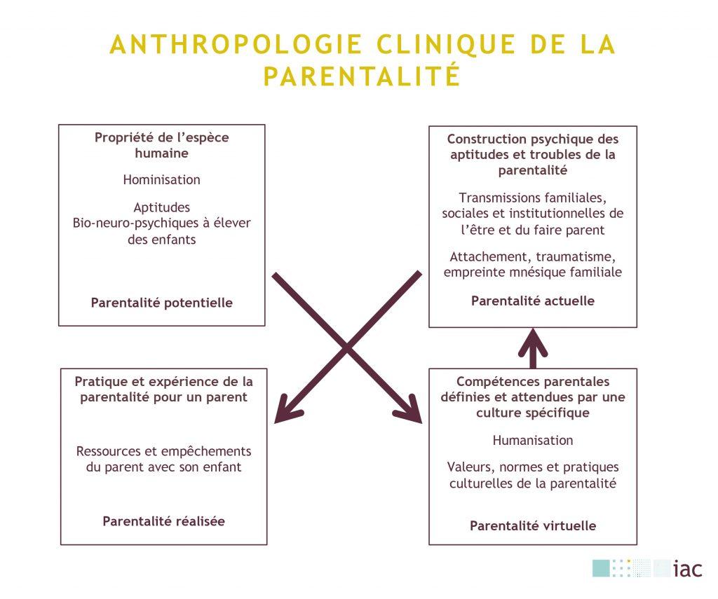 anthropologie clinique de la parentalité schéma