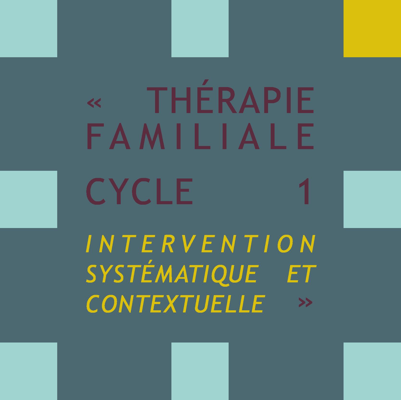 Thérapie familiale cycle 1