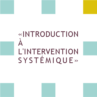 formation inroduction à l'intervention systémique